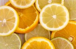 Rebanadas de la naranja y del limón Fotos de archivo