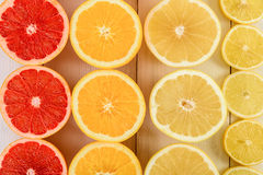Rebanadas de los agrios de la naranja, del pomelo, del limón y de la cal Fotografía de archivo