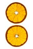 Rebanadas de naranja Fotografía de archivo libre de regalías