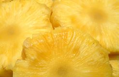Rebanadas de piña fresca Imagen de archivo libre de regalías