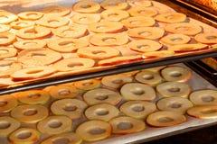 Rebanadas de sequía de manzanas en casa Fotografía de archivo libre de regalías
