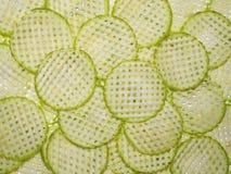 Rebanadas decorativas de la calabaza Imagen de archivo libre de regalías