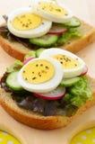 Rebanadas del huevo en el pan del trigo integral Imagen de archivo libre de regalías