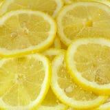 Rebanadas del limón en azúcar imagen de archivo libre de regalías