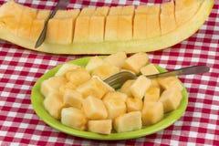 Rebanadas del melón del cantalupo fotografía de archivo