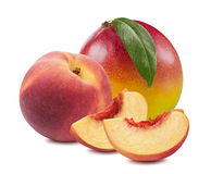 Rebanadas 12 del melocotón de la hoja del mango aisladas en el fondo blanco Imagen de archivo