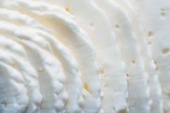Rebanadas del primer de queso curado en salmuera fotos de archivo