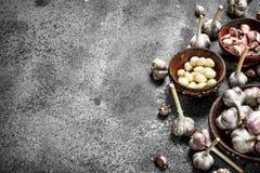 Rebanadas peladas de ajo fresco en cuencos Imágenes de archivo libres de regalías
