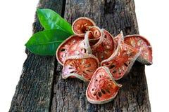 Rebanadas secas de fruta de Bael (marmelos de Aegle) Imágenes de archivo libres de regalías