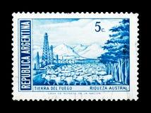 Rebanho dos carneiros em Tierra del Fuego, em personalidades e em serie das paisagens, cerca de 1972 Imagens de Stock Royalty Free
