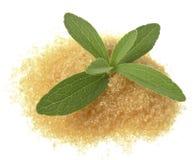 Rebaudiana di Stevia con uno zucchero Fotografie Stock Libere da Diritti