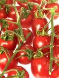 Rebe-Tomaten Lizenzfreie Stockfotografie
