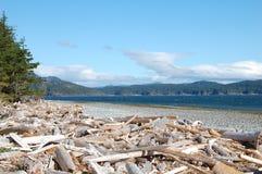 Rebecca Spit Marine Provincial Park Royaltyfri Bild