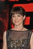 Rebecca-Taube Stockfoto