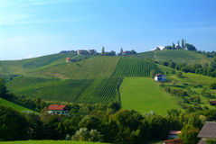 Rebehügel Steiermark Stockfoto