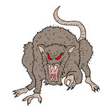Rebel rat Royalty Free Stock Images