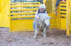 Rebentar da carne de carneiro foto de stock