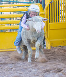 Rebentar da carne de carneiro fotos de stock