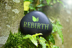 Rebirth Royalty Free Stock Images