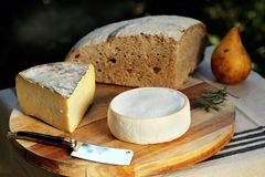 Reblochon Tomme de Savoie French cheese Savoy french Alps France. Fresh AOC Reblochon and Tomme de Savoie, French cheeses made in the Alpine region of Savoy Royalty Free Stock Image