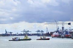 Rebocador no porto de Rotterdam. Imagem de Stock