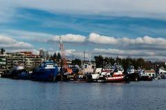 Reboquees do vintage amarrados em Salmon Bay Seattle Washington foto de stock