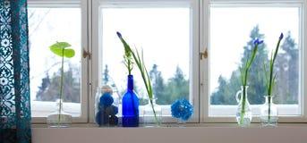 Rebord de fenêtre de ressort images stock