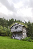 Rebuild historic house in Norway with grass on roo Royalty Free Stock Photography