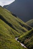 Rebun Forest Course Stream Foto de archivo