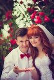 Recém-casados do retrato entre as rosas de florescência Fotografia de Stock