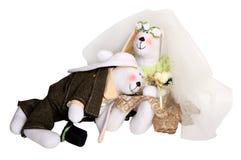 Recém-casados dos coelhos Foto de Stock