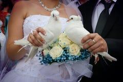Recém-casados felizes que guardam as pombas brancas Foto de Stock Royalty Free