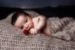 Recém-nascido aumentou Imagem de Stock Royalty Free