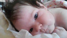 Recém-nascido está explorando um mundo novo Fotos de Stock