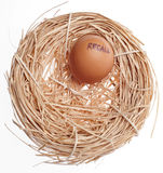 Recall Concept Egg in Nest Stock Photos