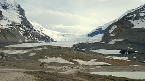 The Receding Athabasca Glacier in Canadian Rockies Royalty Free Stock Photography