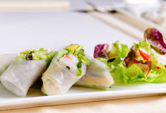 Receita fresca asiática saboroso de Rolls da mola Foto de Stock
