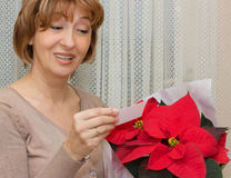 Receiving  a  Poinsettia flowers Stock Photo