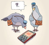 Receiving the SMS. Two carrier pigeons are wonder to receive the SMS Royalty Free Stock Photo