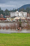 Recent Flooding of the Skagit River Royalty Free Stock Photos