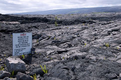 Recent lava flow, Kalapana, Hawaii. Recent lava flow, Big Island, Hawaii Royalty Free Stock Photography