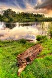 Recente middag - bij het meer Stock Foto