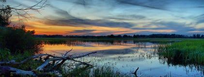 Recente zonsondergang in de moerassen Stock Foto's