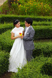 Recentemente coppia sposata nella sosta Fotografie Stock