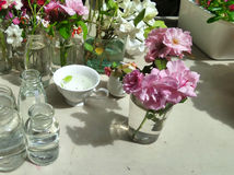Recentemente flor de corte do jardim pronto para arranjar foto de stock
