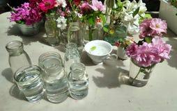 Recentemente flor de corte do jardim pronto para arranjar fotos de stock