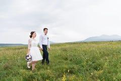Recentemente sposato vada sulle mani su un campo verde fotografia stock
