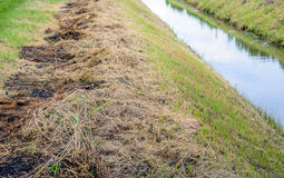 Recently cleaned ditch from close royalty free stock photo