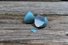 Recently Hatched Robin Egg royalty free stock photo