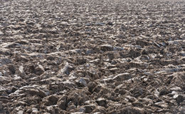 Recently plowed farmland Stock Photo